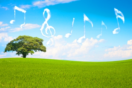 symphonic: Music note cloud shape floting in the park