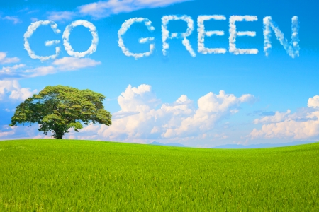 go: Go Green field and tree on clear blue sky