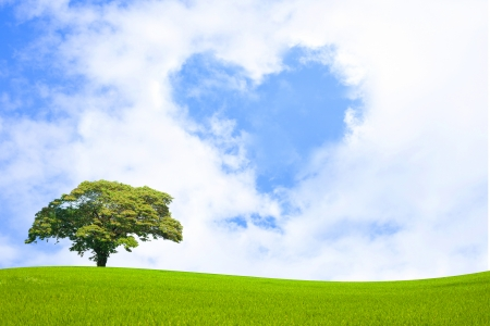 Clouds in shape of heart floting over green field Stock Photo