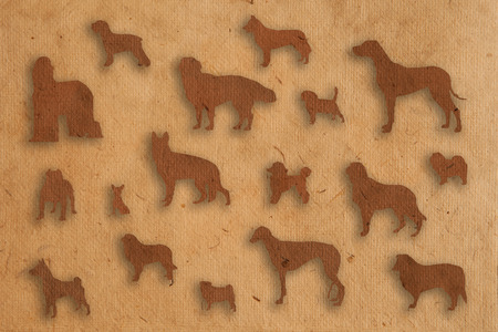 isolate dog paper texture style photo