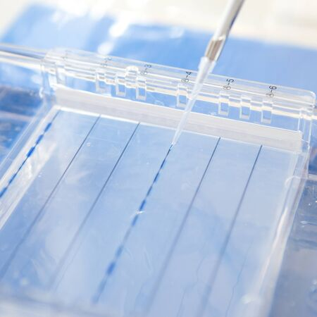 electrophoresis: loading a sample into a gel for electrophoresis