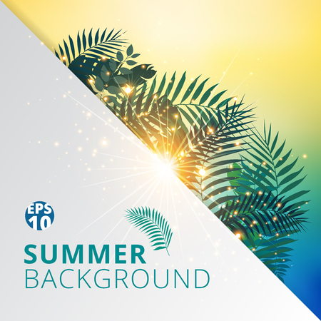 summer tropical with exotic palm leaves or plants and lighting effect on white paper background. Vector illustration