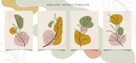 Set of brochure or poster template contemporary botanical wall art Abstract leaves foliage organic shapes on white background. You can use for wallpaper, social media, leaflet, print cover, etc. Vector illustration