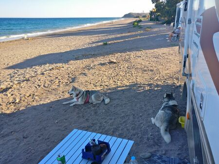 2 huskies laying in the shade of a motorhome camped on the beach at Puntas de Calnegre in Spain Standard-Bild