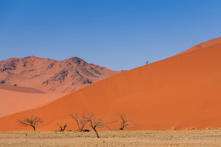 sossusvlei: Sand dune with dead trees deadvlei Sossusvlei, Namibia, Africa. People climbing on dune. Stock Photo