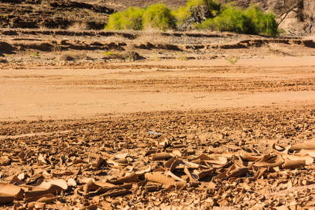 riverbed: Dry riverbed with cracked surface of brown mud. Namibia, Damaraland, Africa. Stock Photo