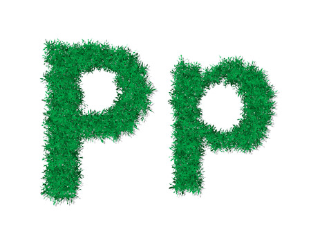 Vector green grass uppercase and lowercase alphabet letter.