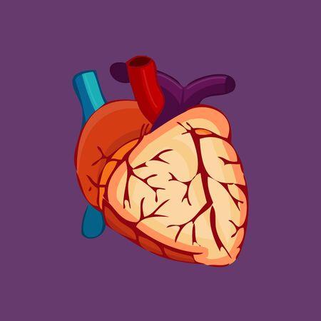 vein: Bloody Halloween parts - beating heart artery vein.