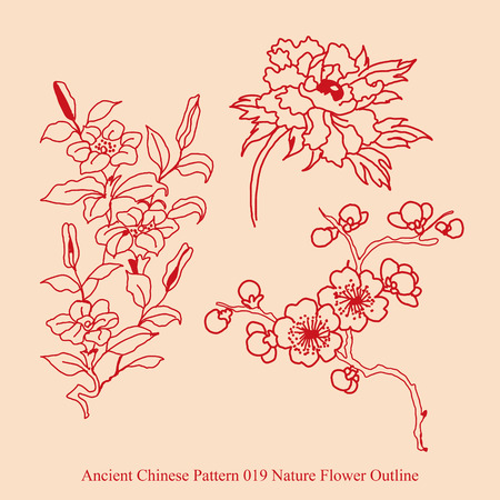 Ancient Chinese Pattern of Nature Flower Outline