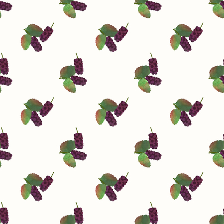 Seamless background image colorful watercolor texture tropical fruit black mulberry