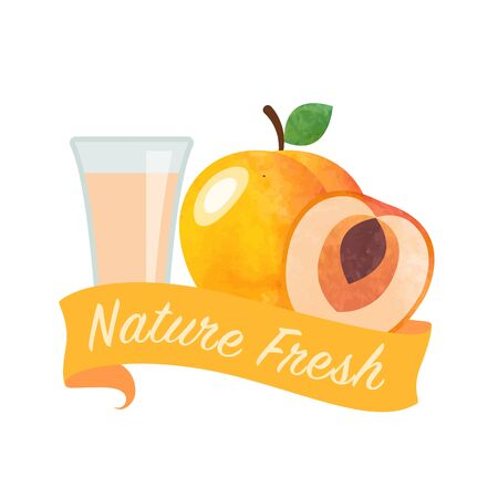 girlish: Colorful watercolor texture vector nature organic fresh fruit juice banner apricot