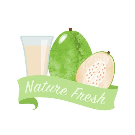 Colorful watercolor texture vector nature organic fresh fruit juice banner white guav