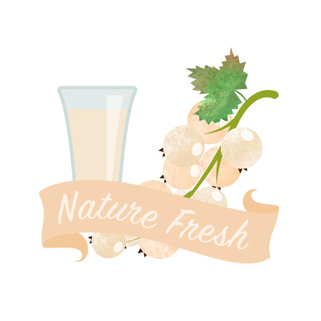 girlish: Colorful watercolor texture vector nature organic fresh fruit juice banner white currant Illustration