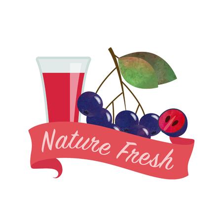 chokeberry: Colorful watercolor texture vector nature organic fresh fruit juice banner black chokeberry aronia berry