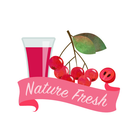Colorful watercolor texture vector nature organic fresh fruit juice banner red chokeberry aronia berry Illustration