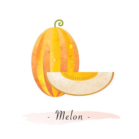 カラフルな水彩テクスチャ ベクトル健康的なフルーツ メロン