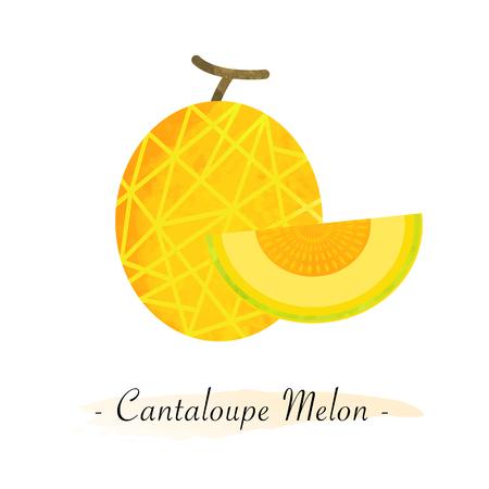 Bunte Aquarell Textur Vektor gesunde Frucht Cantaloupe Melone Standard-Bild - 81299189