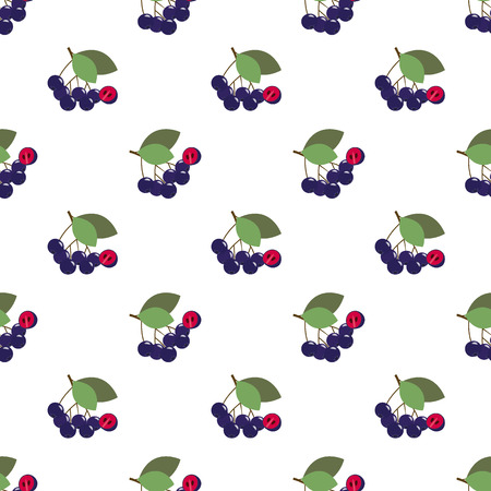 Seamless background image colorful tropical fruit black chokeberry aronia berry
