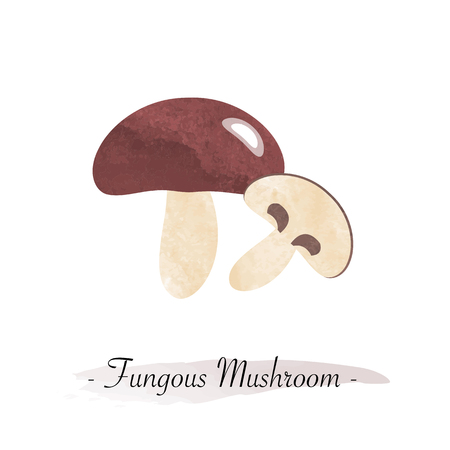 fungous: Colorful watercolor texture vector healthy vegetable fungous mushroom