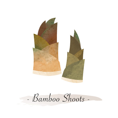 Colorful watercolor texture vector healthy vegetable bamboo shoots