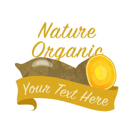 Colorful watercolor texture vector nature organic vegetable banner sweet potato