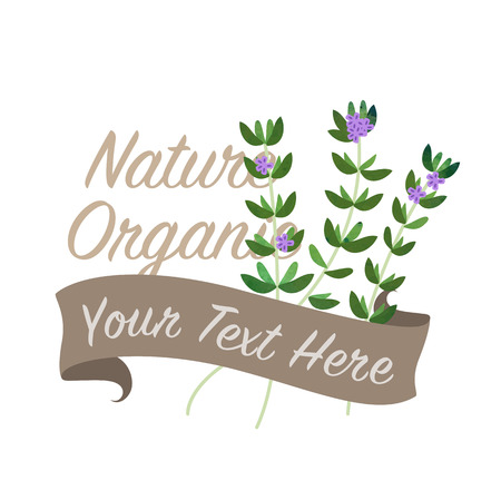 Colorful watercolor texture vector nature organic vegetable banner thyme