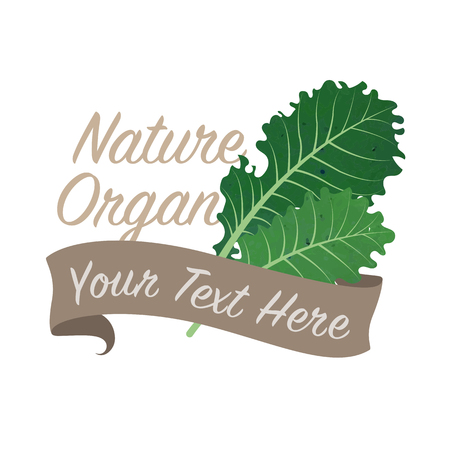 Colorful watercolor texture vector nature organic vegetable banner kale