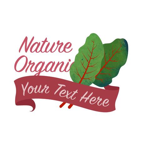 Kleurrijke aquarel textuur vector natuur organische plantaardige banner mangold Zwitserse snijbiet blad Stock Illustratie