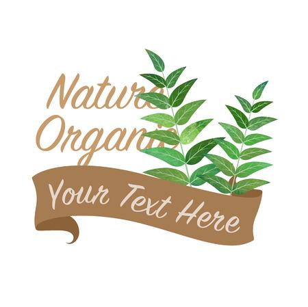 カラフルな水彩テクスチャ ベクトル自然有機野菜バナー カレー葉