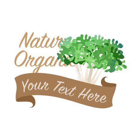Kleurrijke aquarel textuur vector natuur organische plantaardige banner krullend endief
