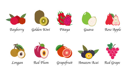 Organic nature health fruit isolated vector collection set Illustration