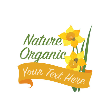 Daffodil flower banner