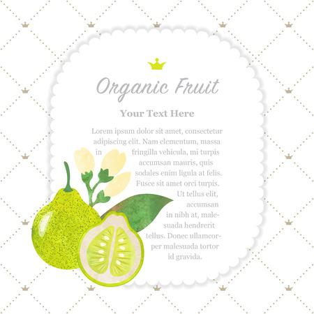 Colorful watercolor texture nature organic fruit memo frame pomelo