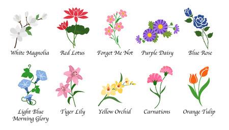 Organic nature botanic garden flower isolated vector collection set