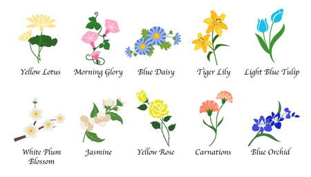 Organic nature botanic garden flower isolated vector collection set