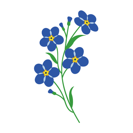 Nature flower blue forget me note, vector botanic garden floral leaf plant.