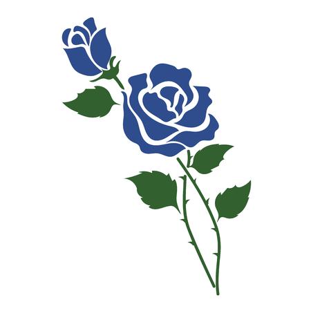 Nature flower blue rose, vector botanic garden floral leaf plant.