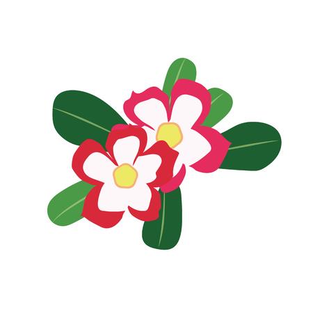 Nature flower desert rose impala lily, vector botanic garden floral leaf plant.