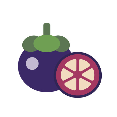 Healthy organic mangosteen, colorful tropical nature fresh fruit objects.