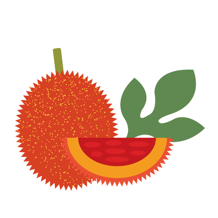 Healthy organic ripe gac fruit, colorful tropical nature fresh fruit objects.