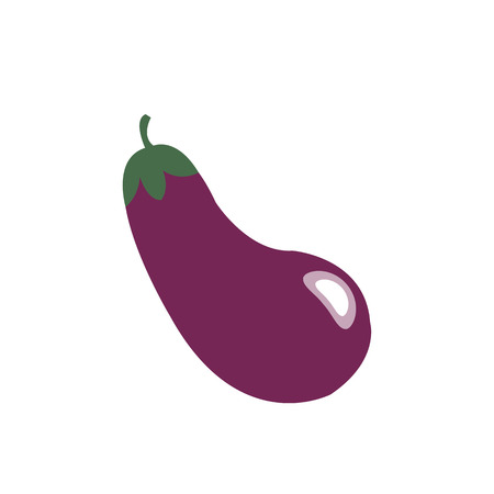 Nature organic vegetable Eggplant, healthy vector colorful food vegetable spice ingredient. Illustration