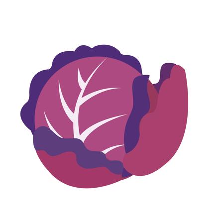 Natur-Bio-Gemüse Purpurkohl, gesunde Vektor-bunte Lebensmittelgemüse-Gewürzzutat.