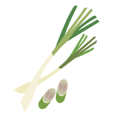 Nature organic vegetable Lemongrass, healthy vector colorful food vegetable spice ingredient. Illustration