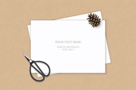 Flat lay top view elegant white composition paper pine cone and vintage metal scissors on kraft background.