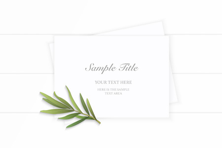 Flat lay top view elegant white composition paper tarragon leaf on wooden background. Vettoriali