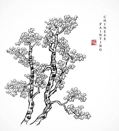 Watercolor ink paint art vector texture illustration Chinese parasol tree. Translation for the Chinese word : Blessing