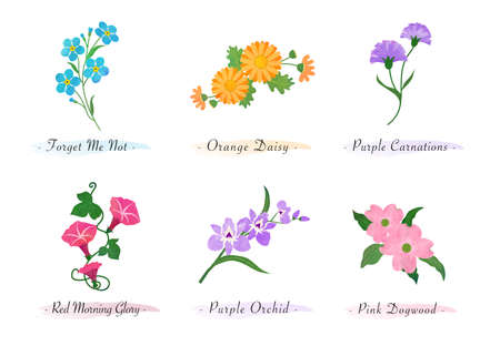 Watercolor botanic garden nature plant flower forget me not daisy carnation morning glory orchid dogwood
