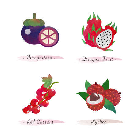 Organic nature healthy food fruit mangosteen dragon fruit red currant lychee