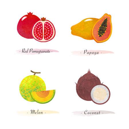 Organic nature healthy food fruit red pomegranate papaya melon coconut Vettoriali