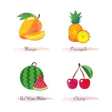 Organic nature healthy food fruit mango pineapple water melon cherry Vettoriali